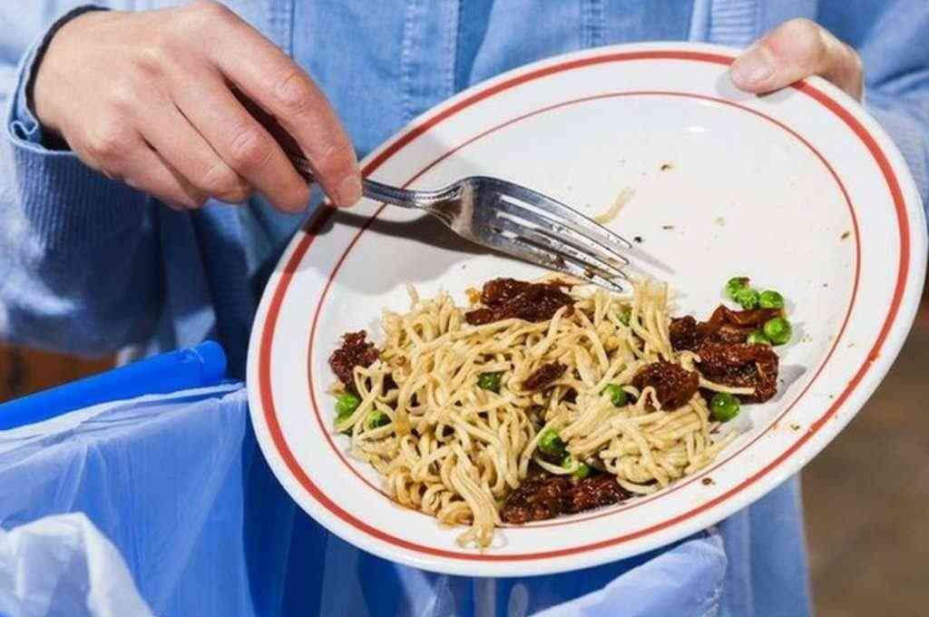 Cada año se desperdician 2.500 millones de toneladas de alimentos, de los que 1.200 millones se pierden ya en el campo y más de 900 millones en los establecimientos de venta o en los domicilios. Crédito: Imagen ilustrativa