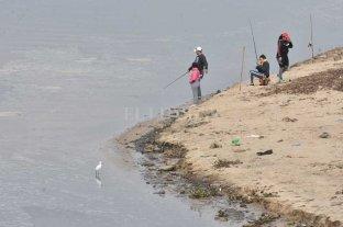 Bajante del Paraná: por la desconexión de  afluentes peligra la supervivencia de peces