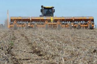 Prevén siembra histórica de granos y récord de 140 millones de toneladas producidas