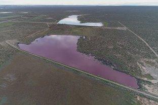 Contaminación: siguen los cruces en Chubut por la laguna que se tiñó de rosa