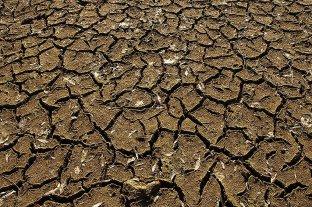 Por la sequía, prohíben prender fuego en nueve localidades correntinas