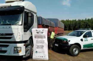 Corrientes: transportaban ilegalmente 196 toneladas de soja en 7 camiones
