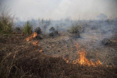 """Otra vez las quemas en las islas: """"Ya deberían estar funcionando los faros"""""""