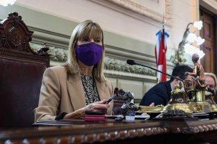 Rodenas pidió licencia por la campaña En el Senado de Santa Fe