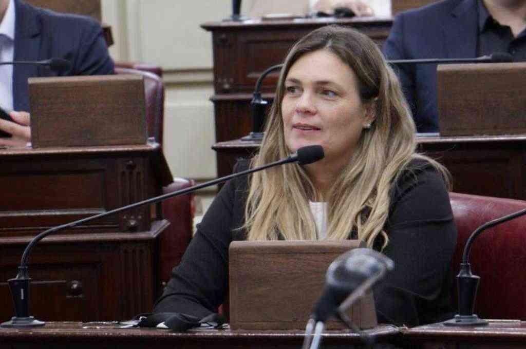 Silvana Di Stéfano, diputada provincial de la Unión Cívica Radical (UCR – FPCyS). Crédito: Gentileza