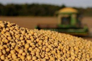 El precio de la soja subió US$ 2 y cerró a US$ 332 en Rosario
