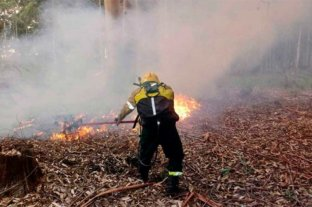 Se mantiene activo un incendio forestal en Entre Ríos