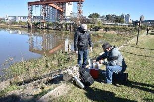 Toman más muestras en el sector del puerto de Santa Fe donde aparecieron aguas rojizas