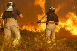 Más del 70 % de los incendios en Italia fueron provocados por el hombre