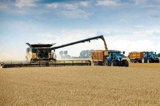 El precio de la soja cayó US$ 8 en Rosario y cerró a US$ 342 la tonelada
