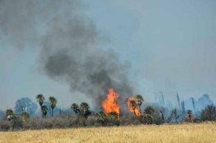Son tres las provincias que continúan con focos activos de incendios forestales