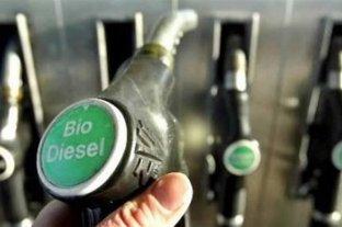 Productores niegan que suba del biodiesel impacte en surtidores