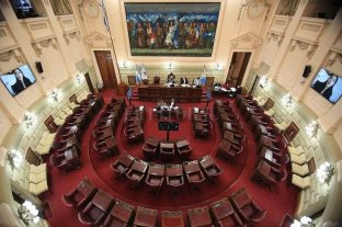 Diez legisladores serán candidatos para las elecciones de noviembre