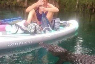 Video: una mujer se defendió de un alligator utilizando el remo de su canoa