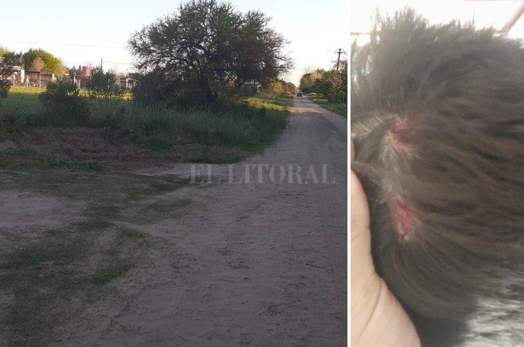 El inmueble donde ocurrió el robo se ubica en calle Pueblos Originarios al 4500, de San José del Rincón / El dueño de casa resultó con una lesión en su cuero cabelludo, producto de un