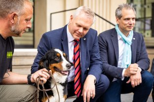 Alemania utilizará perros para rastrear el coronavirus