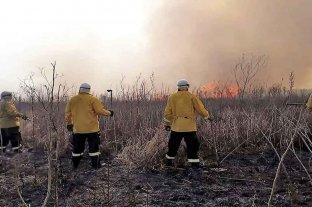 Mendoza, Entre Ríos y Chaco registran focos activos de incendios forestales