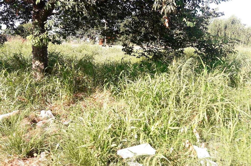 El crimen se remonta a la madrugada del 20 de abril de 2019, y el cadáver fue hallado tres días después en un descampado. Crédito: Archivo El Litoral
