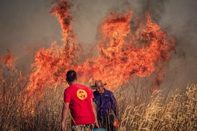 Una ONG pide a Santa Fe que denuncie al gobierno de Entre Ríos por las quemas