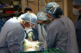 En lo que va del año se realizaron más de mil trasplantes de órganos