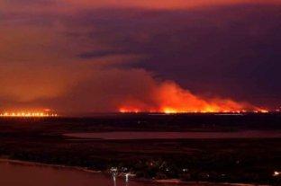 """Incendios en islas: Fiscal de Estado entrerriano dijo que la """"gente de Rosario hace uso inadecuado"""""""