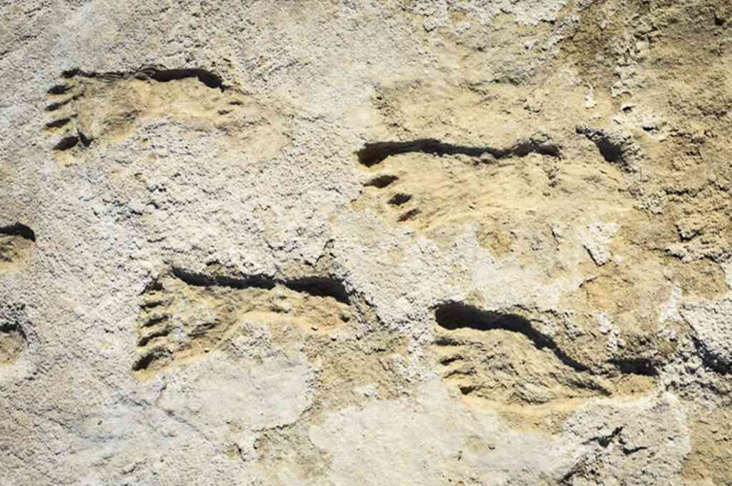 Huellas de 23.000 años, descubiertas en el suroeste de Estados Unidos, sugieren que los asentamientos humanos en América del Norte son previos al fin de la era del hielo. Crédito: Télam