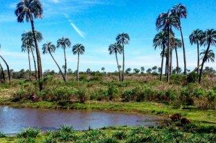 Las reservas turísticas en Entre Ríos superan el 70% para este verano