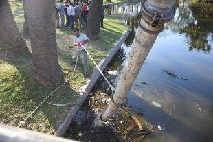 Contaminación en los lagos del Parque Garay: comenzó la limpieza - Limpieza. Este lunes comenzaron las tareas de saneamiento de los lagos.