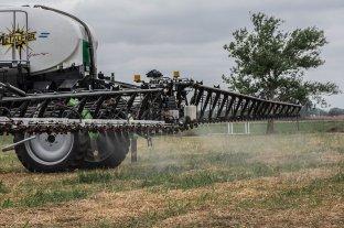 """Realizarán un """"abejazo"""" contra el uso intensivo de agroquímicos"""