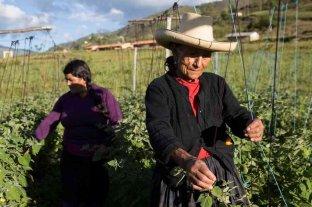 Día Internacional de las Mujeres Rurales, una cuarta parte de la población mundial