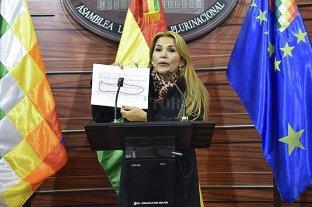 Para el gobierno boliviano, el Tribunal Constitucional certificó que hubo golpe de estado en 2019
