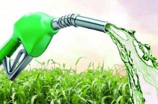 Nuevo marco regulatorio de biocombustibles