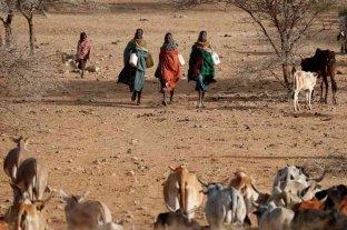 Advierten que el cambio climático amenaza con la supervivencia de millones de africanos