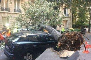 La tormenta Aurora dejó 250.000 hogares sin electricidad en Francia