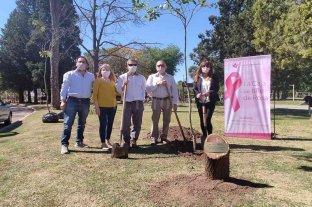 Esperanza: lanzaron una nueva acción de concientización para la prevención del cáncer de mama