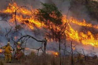 Por las altas temperaturas, advierten un aumento en el riesgo de incendios en Córdoba