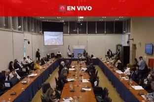 Diputados trabaja en el proyecto de alivio fiscal a clubes de barrio y entidades sin fines de lucro