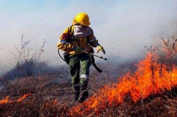 Cinco provincias reportan incendios forestales