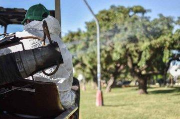 Realizan tareas de fumigación en espacios públicos y corredores de la ciudad de Santa Fe